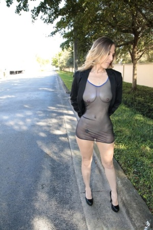 Dirty blonde MILF in see thru clothing is picked up on road and fucked hard