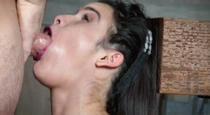 Brunette female Eden Sin learns to deepthroat while restrained on a Sybian 85012796
