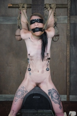 Thin girl with tattoos Lydia Black is flogged and masturbated in a dungeon 74563074