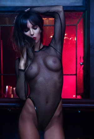 Centerfold babe Brittny Ward poses in her stunning black fishnet