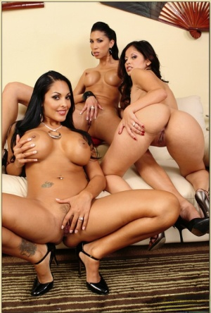 Three busty latinas in shorts stripping and exposing their hot bodies